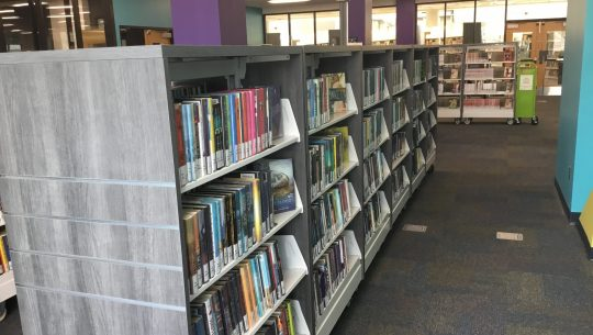 Books organized on library shelving