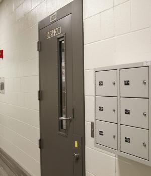 Wall mounted gun locker