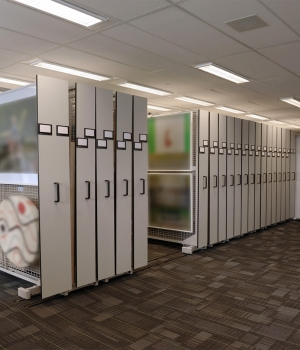 Ontario bank's art collection on mobile art racks