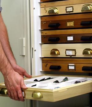 Entomology Drawers