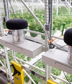 High Yield Cannabis Grow Facility with GROW System