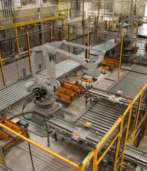 Machine guard protecting conveyor belt area